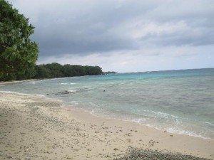 Beach Oyster Island Santo Vanuatu