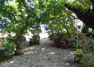 hidden-grove-1024x768